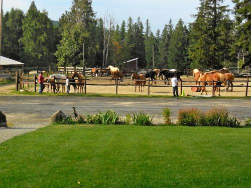Western Pleasure Guest Ranch Photo
