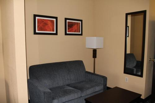 Comfort Suites Lake Ray Hubbard Photo