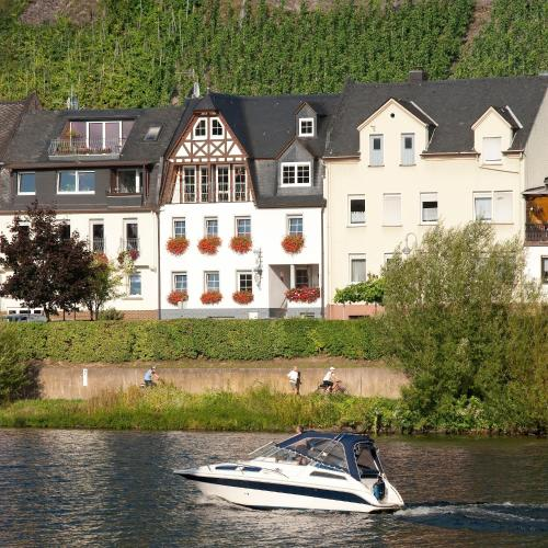 Mosel Panorama - Apartment mit 1 Schlafzimmer