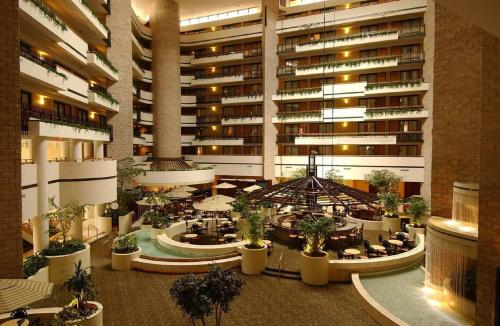 Embassy Suites Orlando - International Drive/Jamaican Court photo 10