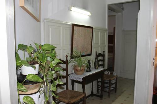 Hostal Ribagorza photo 38