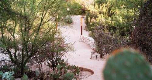 Loews Ventana Canyon Resort Photo