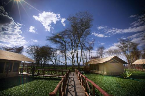 Kiboko Luxury Camp