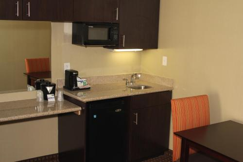 Holiday Inn Express Hotel & Suites Indianapolis W - Airport Area photo 23
