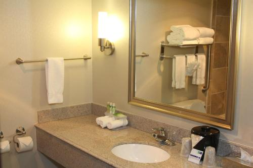 Holiday Inn Express Hotel & Suites Indianapolis W - Airport Area photo 28