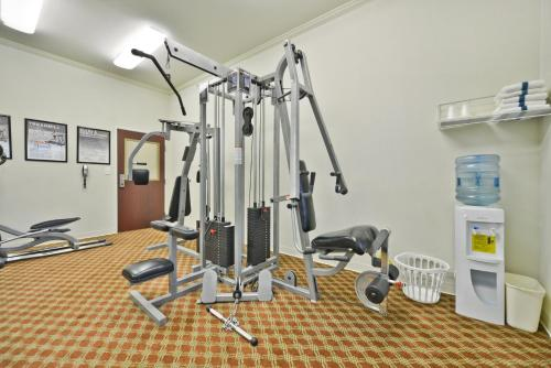 Best Western Limestone Inn and Suites Photo