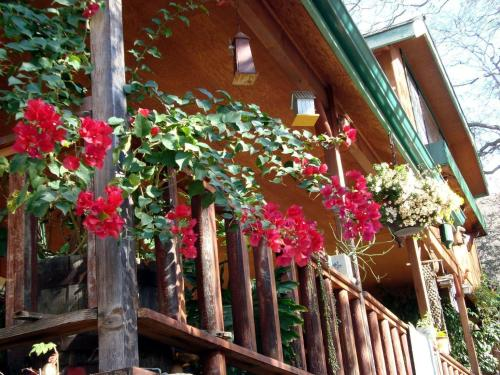Bellevue Guesthouse - Three Rivers, CA 93271