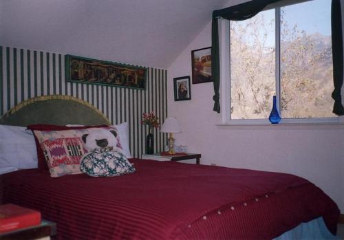 Bellevue Guesthouse Photo