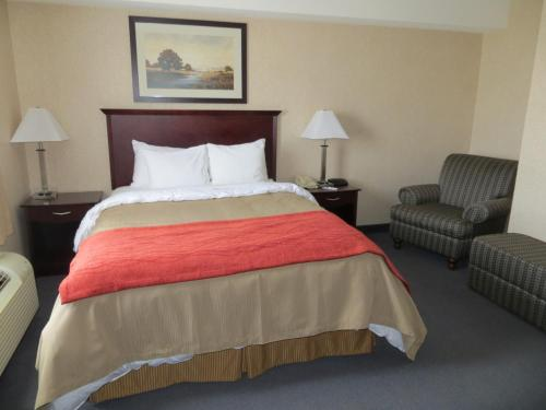 Comfort Inn Mississauga Photo