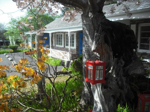 Grey Whale Inn Photo