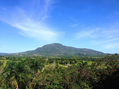 dominican republic discovery role of spain West indies: geographical and duarte peak, in the dominican republic, another component of this range the role of mexico, the west indies.