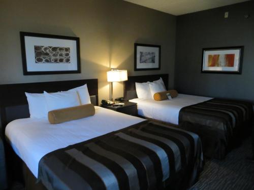 Wingate By Wyndham Los Angeles International Airport LAX - Inglewood, CA 90304