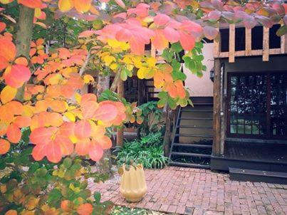 Midrand Wild Goose Guest House Photo