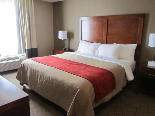 Comfort Inn & Suites Morgan City - Morgan City, LA 70380