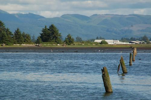 Sheltered Nook On Tillamook Bay Photo