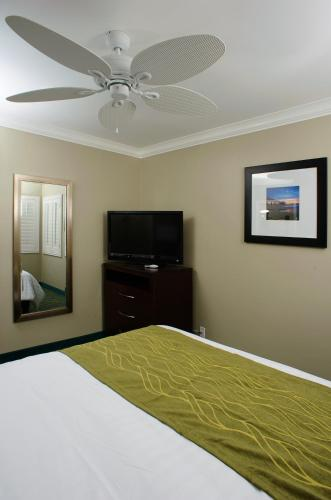 Hi View Inn & Suites Photo
