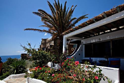 Artemis Apartments in tinos - 0 star hotel
