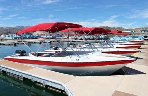 Lake Mohave Marina & Lodge Photo