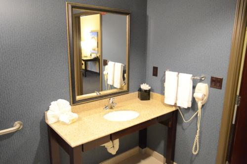 Holiday Inn Channelview Photo