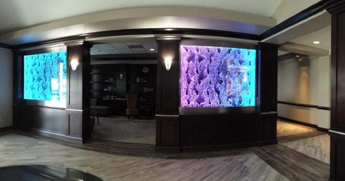 Best Western PLUS Dallas Hotel & Conference Center photo 3