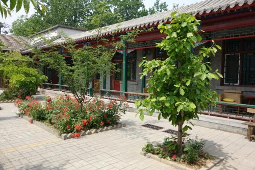 Ming Courtyard photo 66