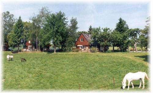 Chalet Pitteschhaff