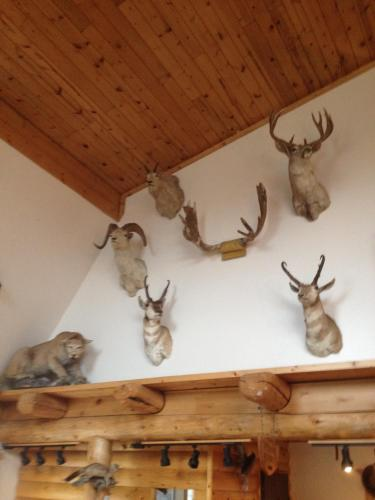 Montana's Duck Lake Lodge Photo