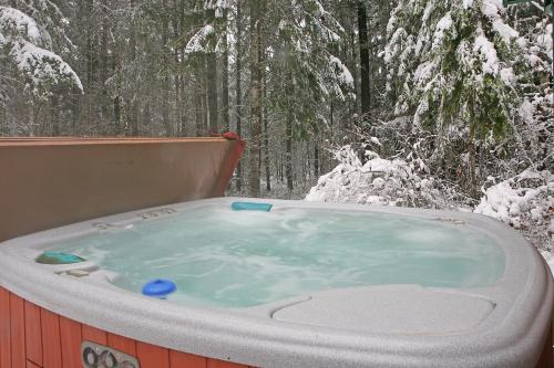Alpine Adventure Lodge - Packwood, WA 98361