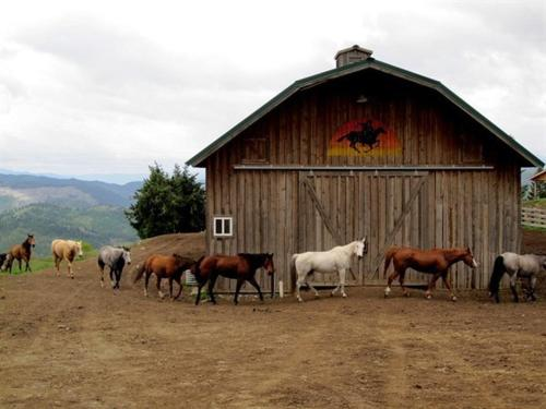 Bull Hill Guest Ranch Photo