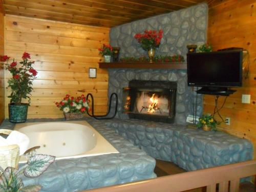 Big bear manor jacuzzi cabins big bear lake ca united for Big bear cabins with jacuzzi tubs