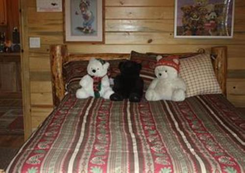 Bear In The Bed and Breakfast Photo