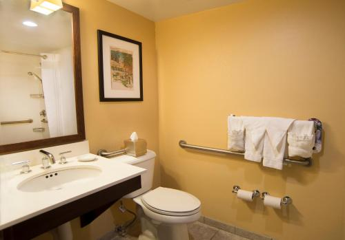 Holiday Inn St. Louis-Forest Park/Hampton Avenue Photo