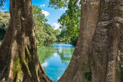 Dream Valley Belize Photo