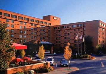 Albany Marriott photo