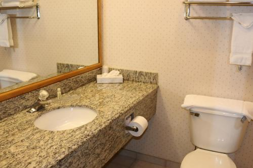 Gray Wolf Inn & Suites Photo