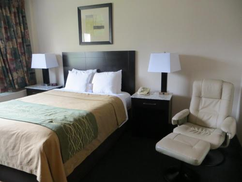 Comfort Inn & Suites Downtown Edmonton Photo