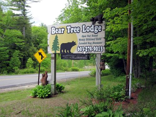 Bear Tree Lodge Photo