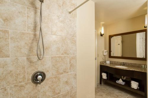 Comfort Suites Clearwater - Dunedin Photo
