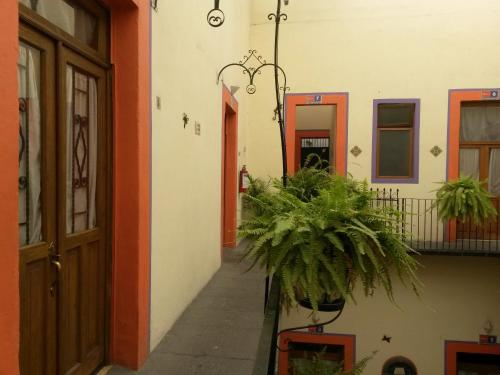 El Hotelito Photo