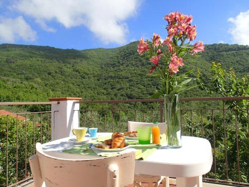 Bed & Breakfast B&B Villa Mare e Ulivi