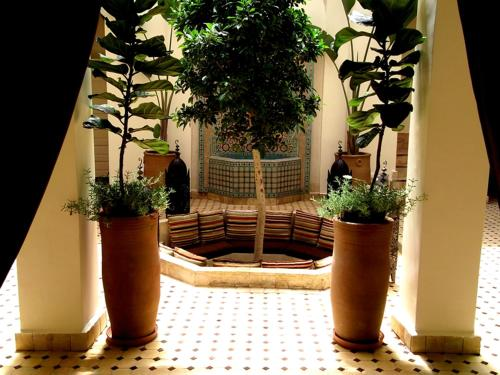 Riad Signature - marrakech -
