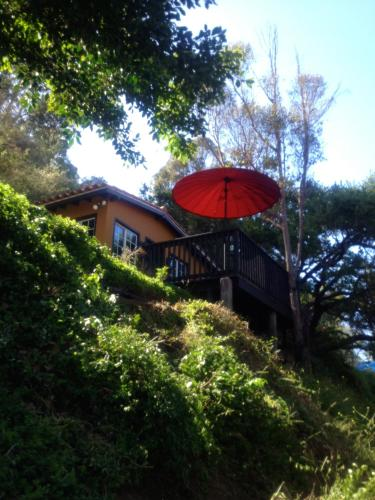 Legendary Laurel Canyon in the Hollywood Hills - Los Angeles, CA 90046