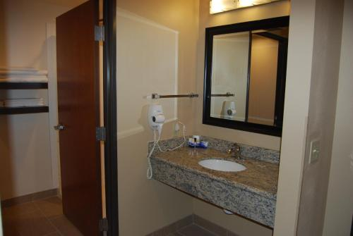 Best Western Plus Finger Lakes Inn & Suites Photo