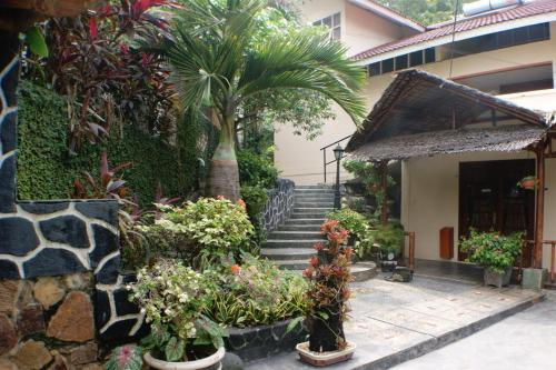 Smiling Hill Guest House and Apartments photo 2