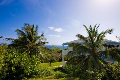 Stella Maris Resort Club Photo
