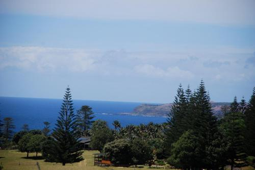Coast Norfolk Island, Бернт-Пайн