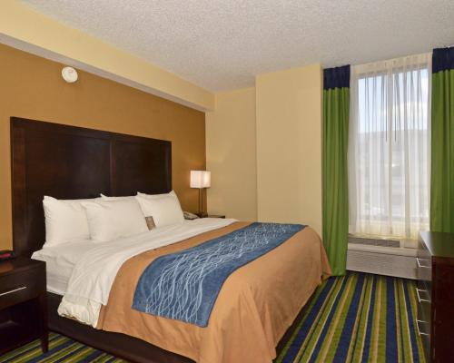 Comfort Inn & Suites - Lantana - West Palm Beach South Photo