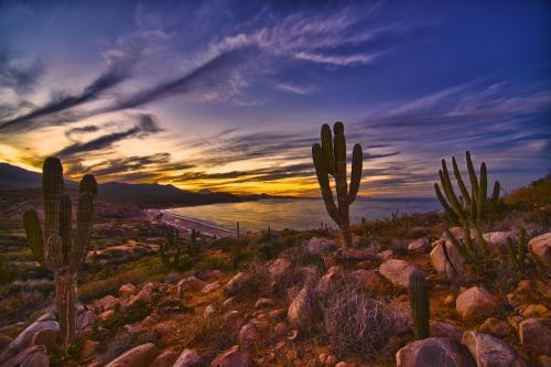 Rancho Las Cruces Photo