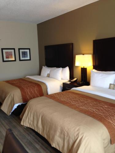 Picture of Comfort Inn Blairsville/><p class=
