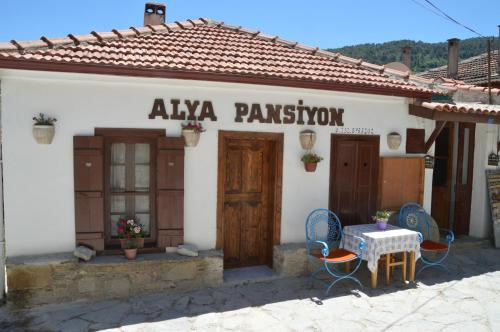 Selcuk Alya Pension adres